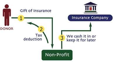 insurance_outright
