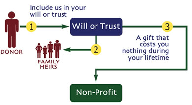 will_or_trust